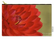 The Red Sun Dahlia Carry-all Pouch
