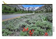 The Road Into Lundy Canyon Carry-all Pouch