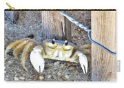 The Sandcrab - Seeking Shelter Carry-all Pouch