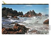 The Sea Abounds Carry-all Pouch