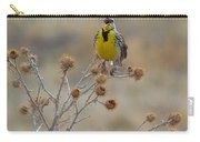 The Song Of The Lark Carry-all Pouch
