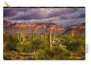 The Sonoran Golden Hour  Carry-all Pouch