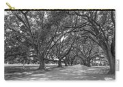 The Southern Way Bw Carry-all Pouch