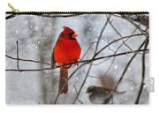 Blue Eyes In The Snow Cardinal  Carry-all Pouch