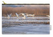 The Swans Return Carry-all Pouch