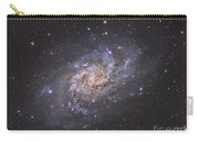 The Triangulum Galaxy Carry-all Pouch by Reinhold Wittich