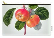 The Trumpington Apple Carry-all Pouch by William Hooker