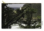 The View Of The Heceta Lighthouse Carry-all Pouch