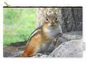The Watching Chipmunk Reclines Carry-all Pouch
