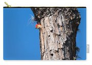 The Woodpecker Is In Carry-all Pouch