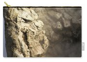 Theodore Roosevelt At Yellowstone Carry-all Pouch