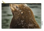 Things Are Looking Up-sealion Carry-all Pouch