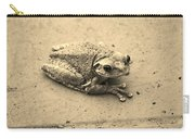 This Old Frog Carry-all Pouch