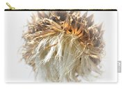Thistle Abstract 14-1 Carry-all Pouch