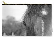 Thoroughbred B/w Carry-all Pouch by Jennifer Ancker