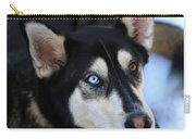 Those Eyes Carry-all Pouch by Carol Groenen