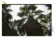 Thousand Palms Canyon Carry-all Pouch
