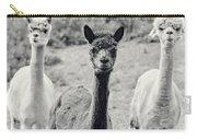 Three Alpaca Friends Carry-all Pouch