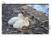 Three Baby Ducks Carry-all Pouch