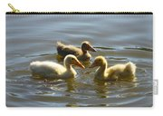 Three Baby Ducks Swimming Carry-all Pouch