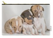 Three Collie Puppies Carry-all Pouch by Martin Capek