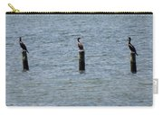 Three Cormorants Carry-all Pouch