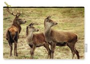 Wildlife Three Red Deer Carry-all Pouch
