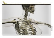 Three Dimensional View Of Female Rib Carry-all Pouch