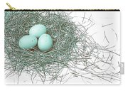 Three Eggs In A Nest Teal Brown Carry-all Pouch