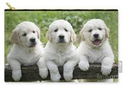 Three Golden Retriever Puppies Carry-all Pouch