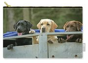 Three Kinds Of Labradors Carry-all Pouch