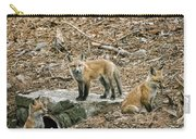 Three Kits Carry-all Pouch