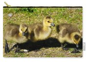 Three Little Goslings Carry-all Pouch