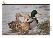 Three Mallards Card - Ducks Carry-all Pouch