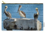 Three Pelicans Carry-all Pouch