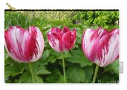 Three Pink Rembrandt Tulips Carry-all Pouch