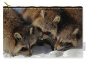Three Sweet Raccoons Carry-all Pouch
