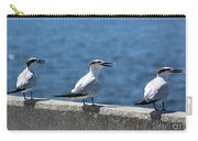 Three Turning Terns Carry-all Pouch