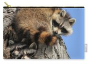 Three Young Raccoons Carry-all Pouch