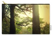 Through The Forest To The Lake Carry-all Pouch
