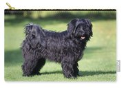Tibetan Terrier Dog Standing Carry-all Pouch