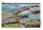 Tide Pools Revealed   Cardiff Carry-all Pouch