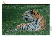 Tiger At Rest 4 Carry-all Pouch