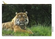 Tiger At Rest Carry-all Pouch