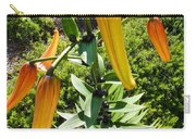 Tiger Buds Carry-all Pouch