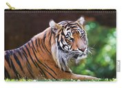 Tiger In The Sun Painting Carry-all Pouch