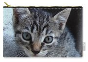 Tiger Kitten Carry-all Pouch
