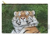 Tiger Nap Time Carry-all Pouch