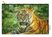Tiger Resting Photo Art 05 Carry-all Pouch