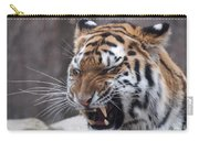 Tiger Smile Carry-all Pouch